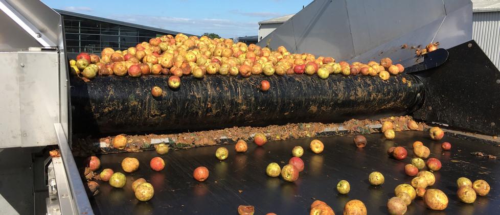 Apple Conveyor