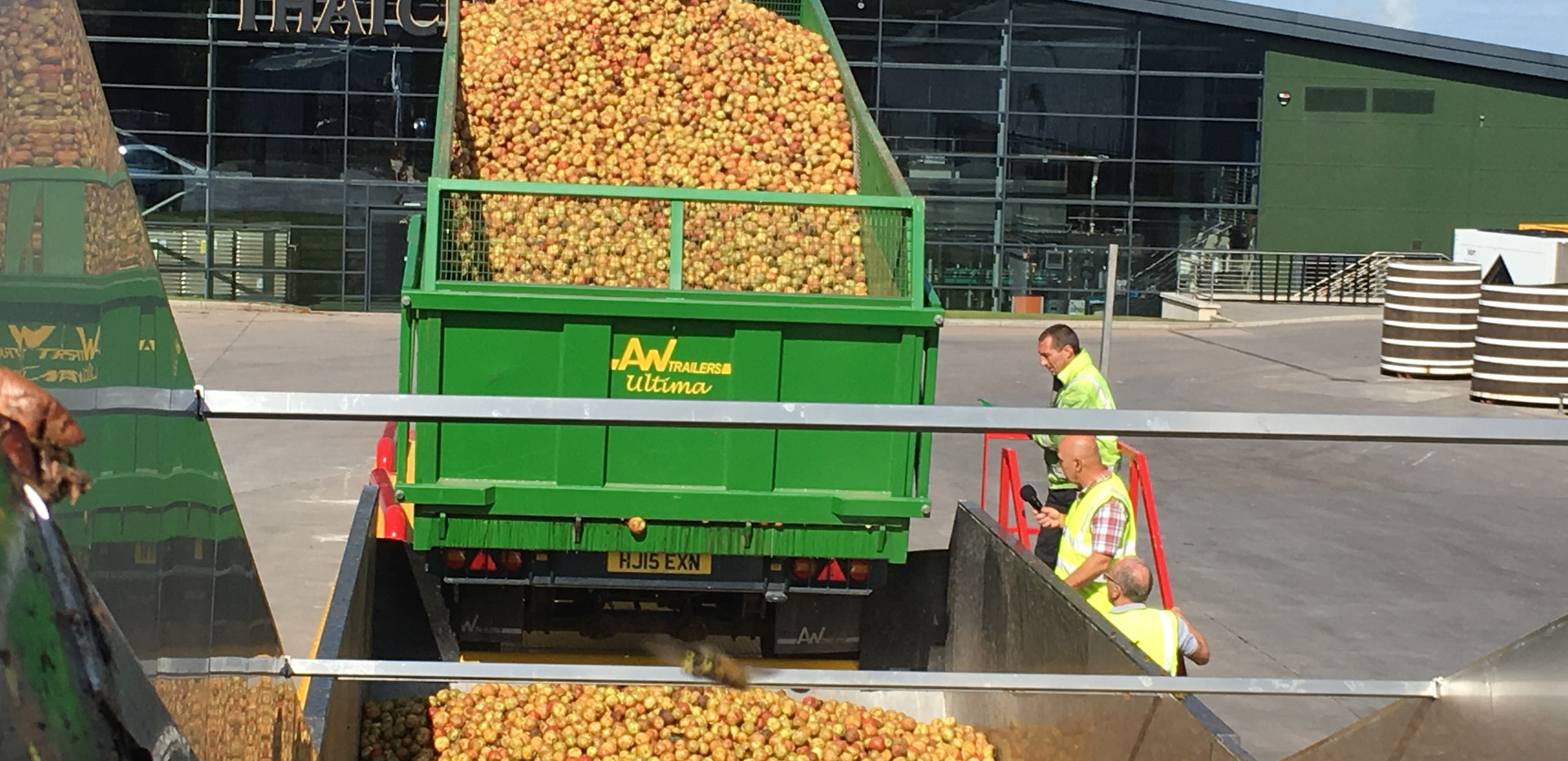 Apples Unloading