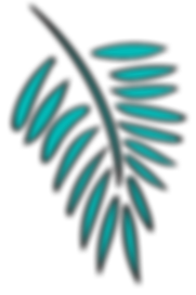 palm leaves_digital-03.png