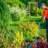 Gardener Dublin 11