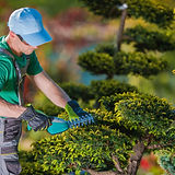 Gardener Dublin 14