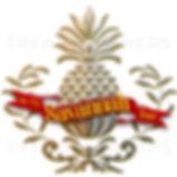mcst_logo_prelim1.2_tskyers.jpg
