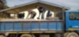 compound wall 0.JPG
