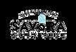 savora logo copy.png