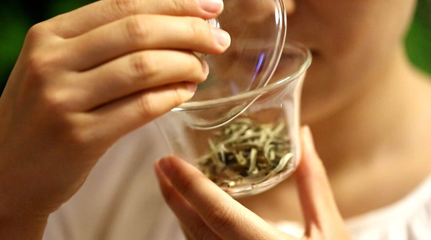 Smelling the aroma of the dry tea leaves in a gaiwan.