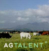 ag talent 3.jpg