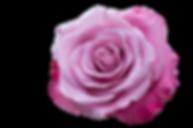 emotion-3025380_1920 (1).png