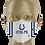 Thumbnail: Colts
