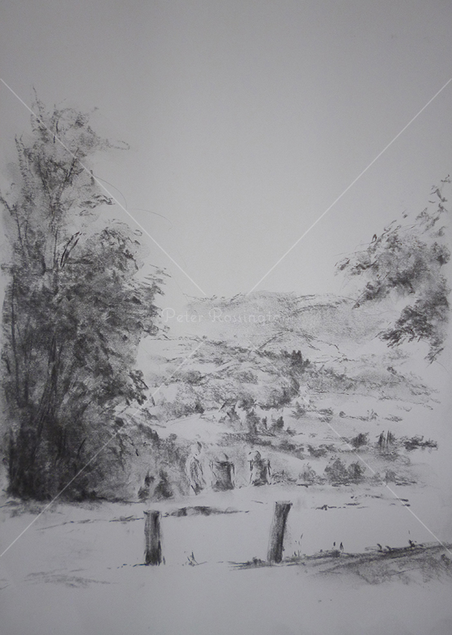 Box Hill, Surrey, Charcoal, 2016