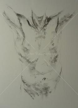 Nude study, Charcoal, 2016