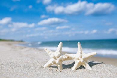 Captiva beach wedding packages