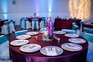 Weddng Reception decor fort myers