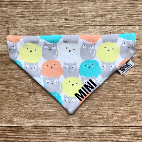 Owl Cat & Arrows on Grey