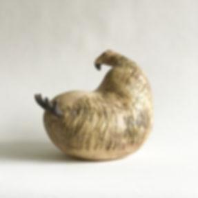 vreemde vogel 1.jpg