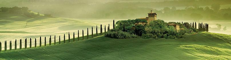 Day 8 Tuscany.jpg