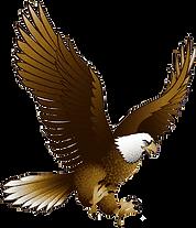 logo-eagle-pic.png