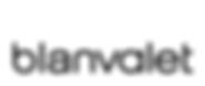 blanvalet_logo_fmt.png