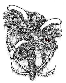 aliien vs predator