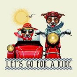 Let's go for a  ride /jack russel