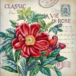 Fleur classic la vie en rose