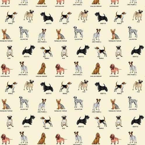 les divers chiens