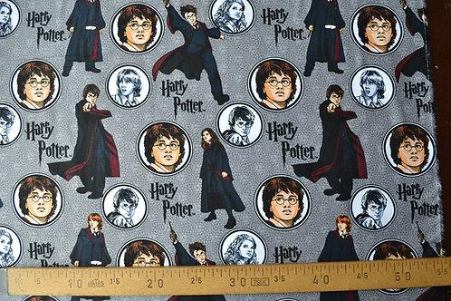 Mes sorciers préférés, Harry Potter