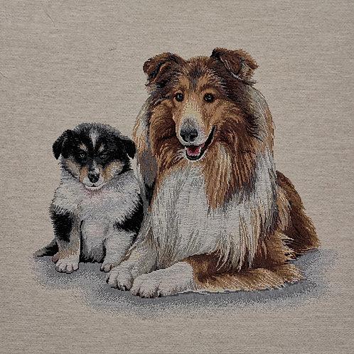 Lassie et le chiot