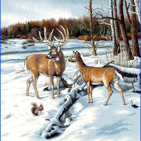 Carré - Cerf et biche dans la neige