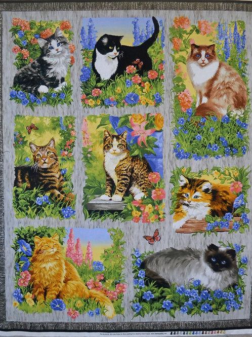 Jardin fleuri de chats