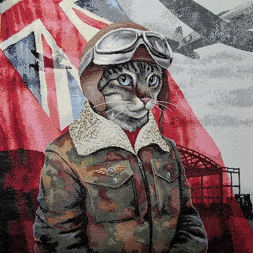Chat pilote