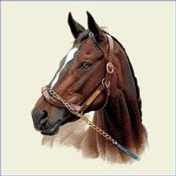 Carré - Cheval marron