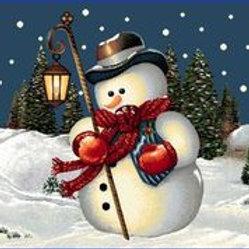 Bonhomme de neige nuit