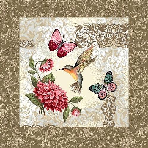 Colibri et papillons