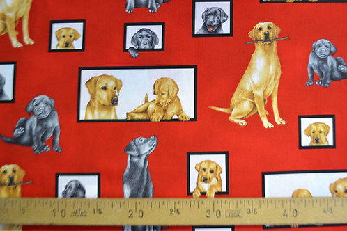 Patch - Chiens fond rouge