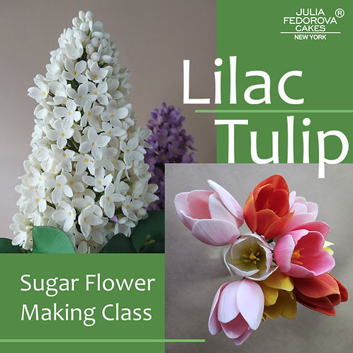 Lilac and Tulip Sugar Flower making class