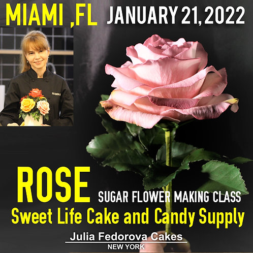 Rose class. Botanically correct full blooming with leaves January, 21/2022