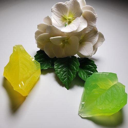 Hydrangea leaf small 502v