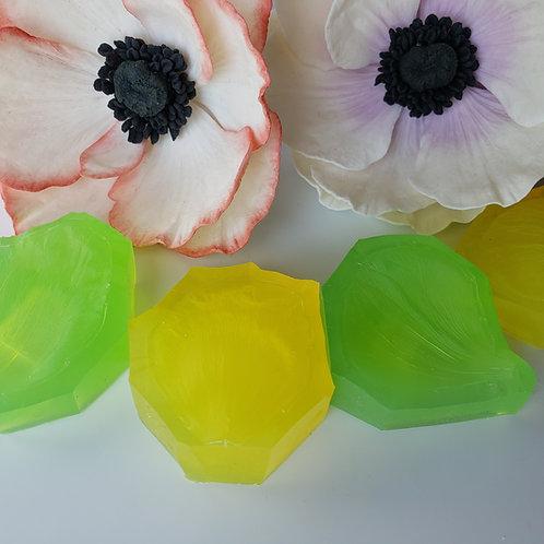 Anemone set of two 110v111v