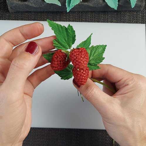 Raspberry berry cone-shaped 923m