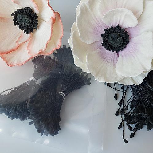 Stamens Black sbkcs300