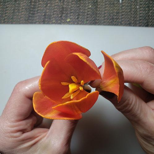 Tulip pistil M mold and stamen M veiner set of two 927m, 939m