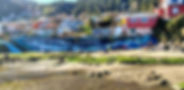 ballena 2.jpg