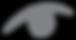 sidabrinis_kiras_logo_akis.png