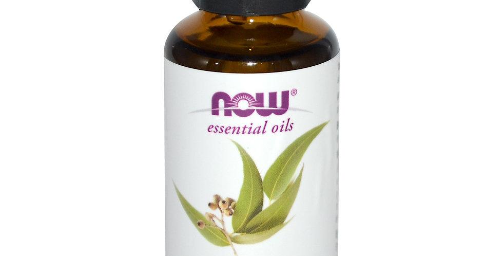 NOW Foods Essential Oils Eucalyptus