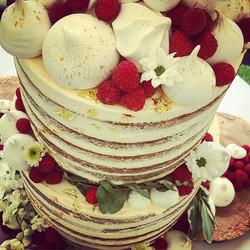 Naked wedding cake_._._._