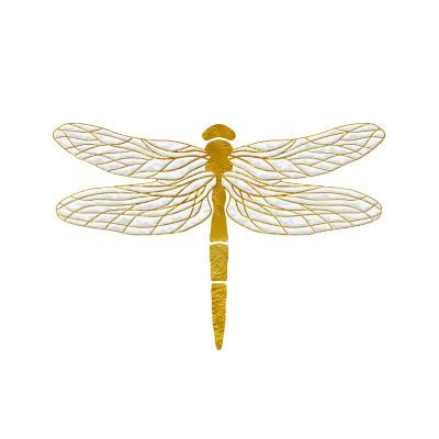 Nymf rebirth into a Dragonfly. New brand story.