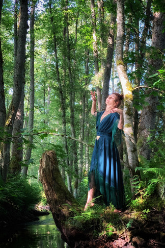 The Fairy of Sacred Forest