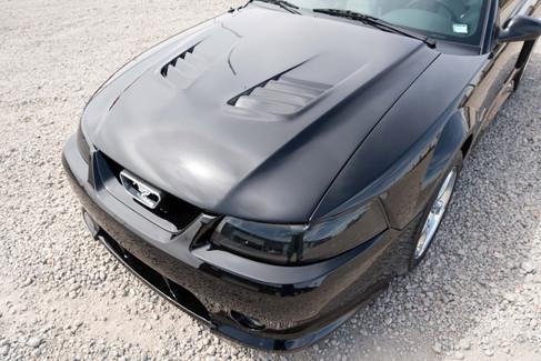 Mustang Roush Paint Polishing Correction Regina Unleashed Auto Care