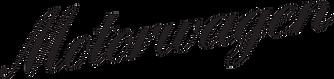 v1_logo_black_small.png