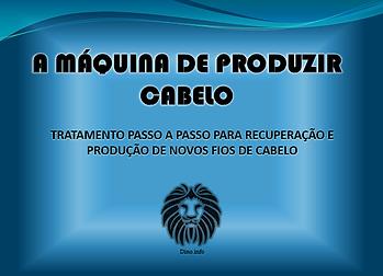 capa 100.png